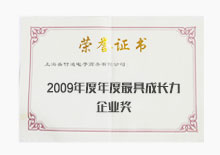 2009年度最具成长力企业奖