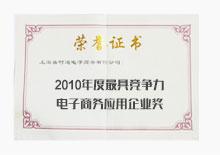 2010年度最具竞争力电子商务应用企业奖